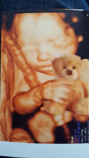 bear_it